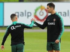 Fernando Santos dice que Cristiano es un profesional. EFE