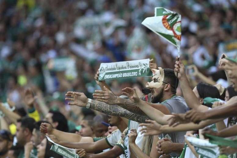 Palmeiras se pasa al césped artificial. EFE/Sebastião Moreira/Archivo