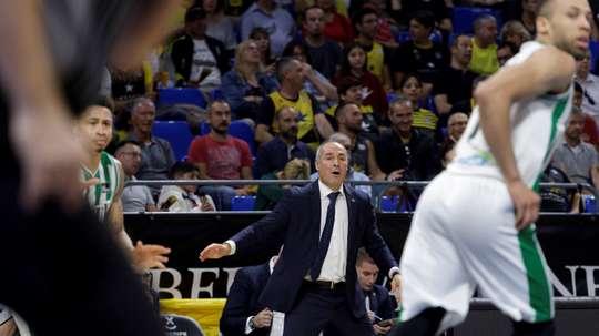 El entrenador del Coosur Real Betis, Curro Segura.- EFE/Ramón de la Rocha/Archivo