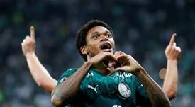 Brasil suspende sus torneos nacionales. EFE/Sebastiao Moreira