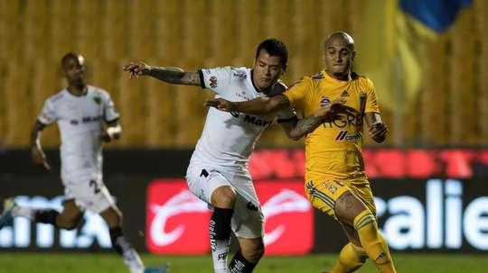 Juárez FC quiere seguir su buena línea en el torneo Apertura. EFE/Miguel Sierra