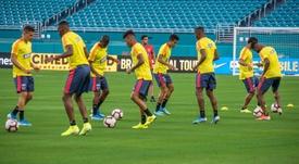 Colombia tenía previsto jugar con México en Estados Unidos. EFE/Archivo