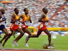 De derecha a izquierda, los africanos Moses Ndiema Kipsiro,Tariku Bekele y Vincent Kipsegechi Yator y el estadounidense Bernard Lagat compiten en la prueba de los 3.000en Split (Croacia) en 2010. EFE/STR/Archivo