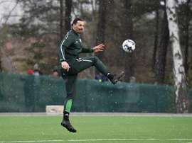 Ibrahimovic infortunato. EFE