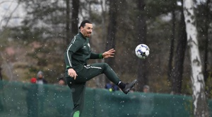 Ibrahimovic infortunato. EFE