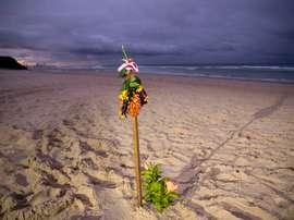 Imagen de una flor en la playa de Gold Coast (Australia) en recuerdo del australiano Alex Pullin. EFE/EPA/GLENN HUNT