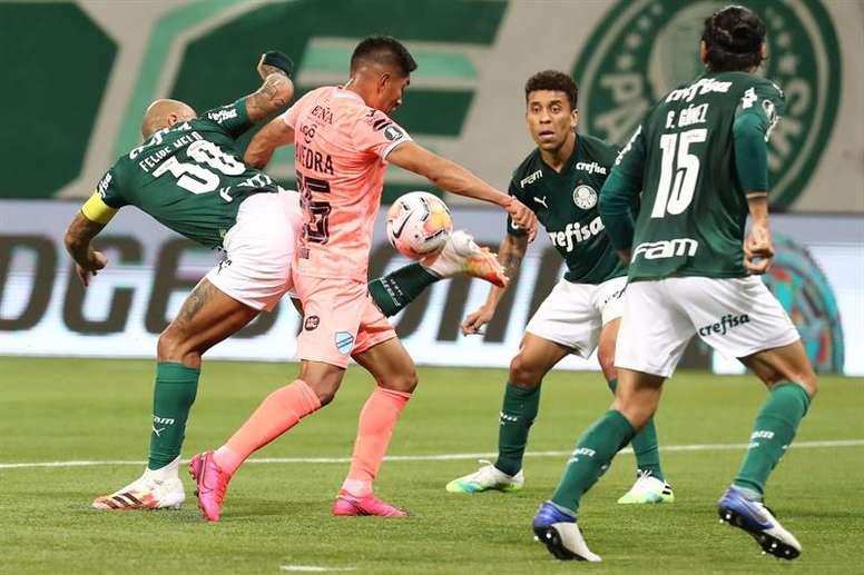 Andrey acalma ânimos enquanto Palmeiras ainda busca seu futuro técnico. EFE