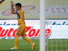 Tigres confirma su cartel de candidato y golpea a San Luis. EFE/Antonio Ojeda