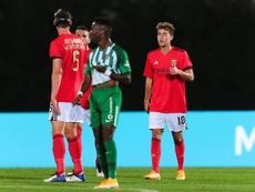 El Benfica golea a lomos de Darwin Núñez y Waldschmid. EFE