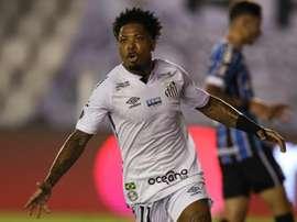 Palmeiras y Santos se miden en la final de la Libertadores. EFE