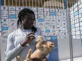 Gomis puede presumir de goles... y de mascota. Twitter/Alhilal_EN