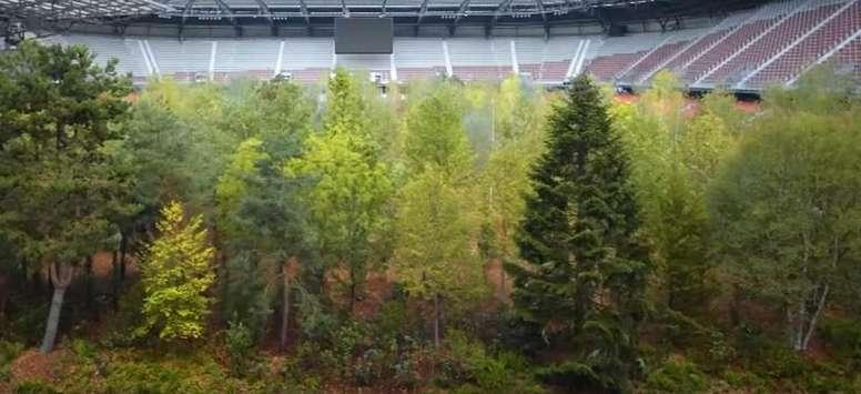 ¡Crean un bosque dentro de un estadio! Captura/Youtube/FAZ