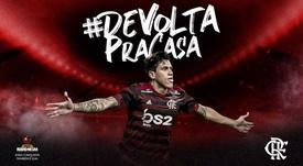 Pedro regresa a Flamengo. Flamengo