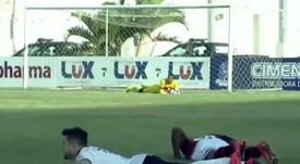 Captura del momento en que varios jugadores se tiran al suelo para evitar a las abejas. Twitter