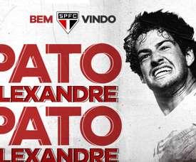 Pato de retour au Brésil. SaoPaulo