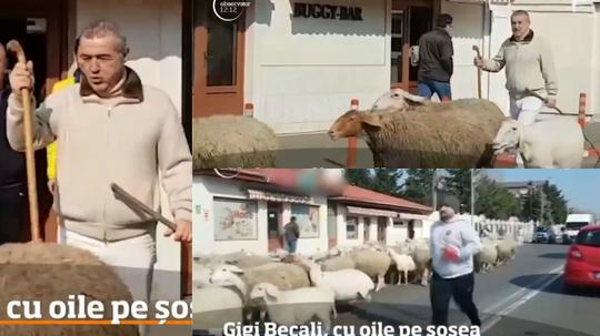 'Gigi' Becali colapsó el tráfico en Pipera. Collage/ObservadorTV