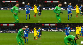 Ibisevic a pété les plombs. Collage/BeINSports