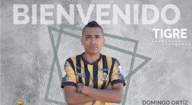 Domingo Ortiz ya es jugador de Tigres. Twitter/TigresCol