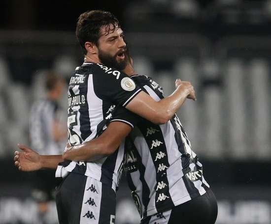 Botafogo respira y deja a Avaí al borde del infierno. Botafogo