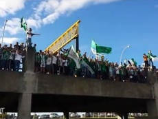 The impressive support from Atlético Nacional's fanbase. DUGOUT