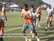 Santos volta aos treinos de olho no duelo contra o Inter. DUGOUT