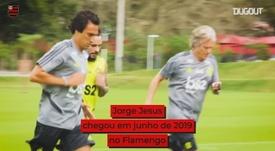 Veja o que o técnico português viveu no Flamengo. DUGOUT