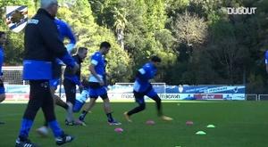 Sampdoria back on the field ahead of Bologna game. DUGOUT