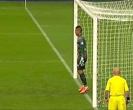 Les doublés d'Ibrahimovic et Cavani en finale de Coupe de la Ligue face à Bastia. DUGOUT