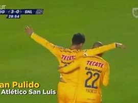Cinq superbes buts des Tigres en 2014. DUGOUT