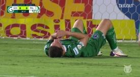Highlights: Goiás 1-0 Palmeiras. DUGOUT