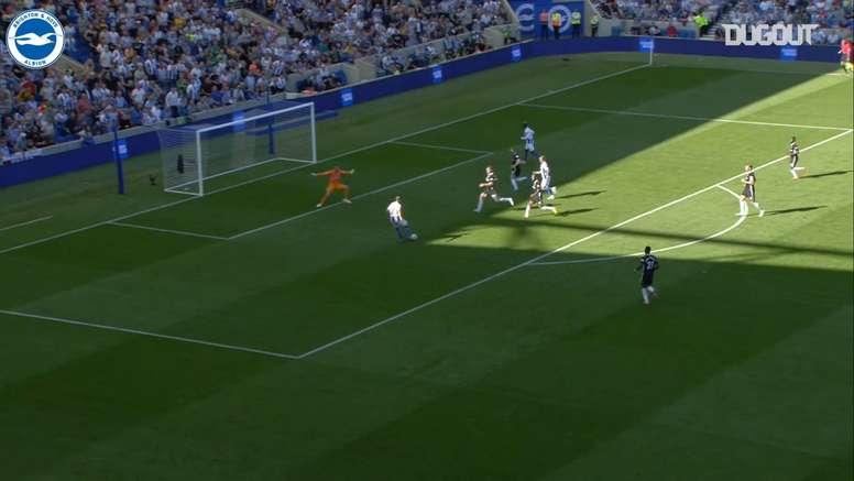 Glenn Murray has scored some important goals for Brighton. DUGOUT