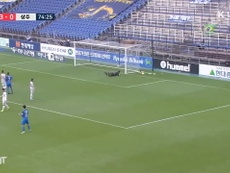 Junior Negao scored almost half of Ulsan's goals. DUGOUT