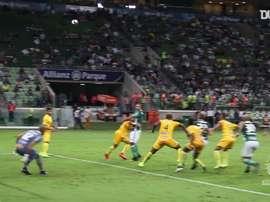 Il primo gol di Felipe Melo con il Palmeiras. Dugout