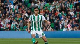 Le Betis veut prolonger Mandi et Joaquin le plus tôt possible. Real Betis
