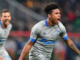 Weston Mckennie de Schalke 04. AFP