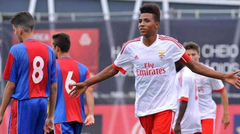 Gedson Fernandes receiving interest from several Premier League sides. slbenfica