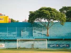 Resistencia de Paraguay, mediante un comunicado, anunció que hizo socio un árbol. Twitter