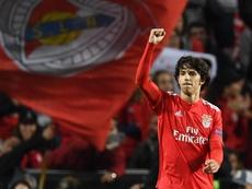 Il Benfica blinda il talento. Goal