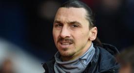 Calciomercato Bologna, Sabatini: 'Ibrahimovic non verrà'. Goal