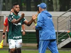 Colombiano já é o 3º maior artilheiro do Verdão na Libertadores. Goal
