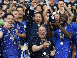 Cardiff City secure their spot in the Premier League. GOAL