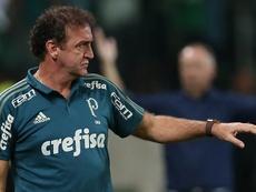 Palmeiras 1 x 0 Coritiba: Jean marca e o Verdão volta para a quarta posição no Brasileirão