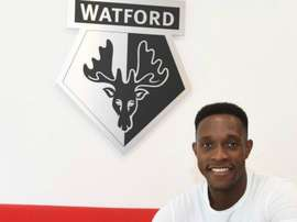Welbeck giocherà nel Watford. Goal