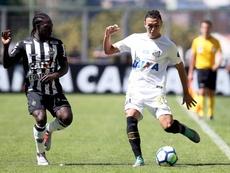 Santos x Atlético-MG: Peixe nunca perdeu para o Galo em eliminatórias.