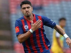 Dimitri Petratos was key to Newcastle winning against Central Coast. GOAL