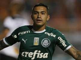 Ex-cruzeirenses do Palmeiras ajudaram no rebaixamento. Goal