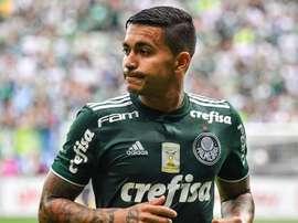 Quantos clubes já tentaram tirar Dudu do Palmeiras?