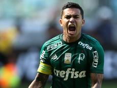 'Verdão' vence pelo campeonato brasileiro. Goal
