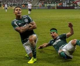 Fake news!  Torcida do Palmeiras vibra com falso gol do Grêmio e engana até o elenco.