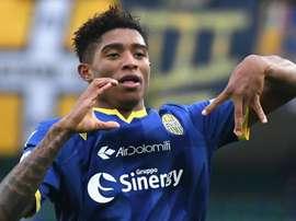 Verona, si ferma Salcedo: intervento al ginocchio, ritorno nel 2020